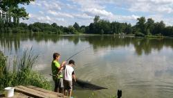 Rybníky Pilský a Pazderna